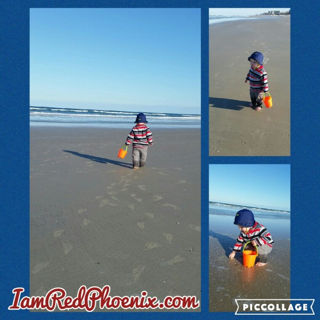 Beach 022816.jpg